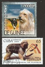 Catalan Sheepdog * Int'l Dog Postage Stamp Art Collection * Great Gift Idea *