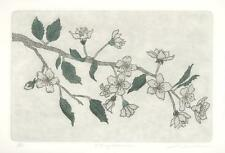 CHERRY BLOSSOMS FLOWERS BOTANICAL PENCIL SIGNED S/N L/E ETCHING ORIGINAL PRINT