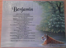 Peronsalised Gift - First Name Meaning Certificate Siberian Tiger Reflection