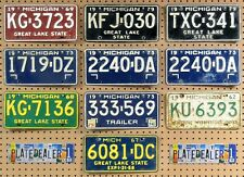 10 MICHIGAN Colored License Plates Tags Crafts Art Man Cave Decor 1 PAIR LOT 723