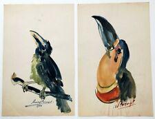 Stanislas Van Den Brempt 10 Bird Drawings 1938-53 Antwerp Royal Academy of Art
