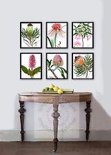 Vintage Botanical Art Prints set of 6 mixed floral spring decor wall hanging