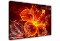FLAMING RED FIRE FLOWER ABSTRACT LARGE CANVAS WALL ART PHOTO PRINTS IMAGE
