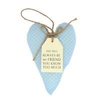 Special Friend Sentiments From The Heart Hanging Cushion Lovely Gifts Range