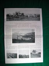 Nel 1920 Istria colonia agricola militare Punta Grossa + Dejanice di Catalani