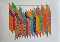 FRANCO GIULI serigrafia Struttura 50x70 firmata numerata 35/99 pubblicata