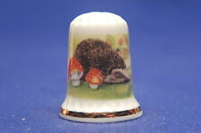 TCC Hampshire Hall Hedgehogs China Thimble B/80