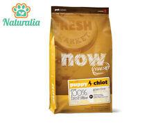 PETCUREAN NOW FRESH- PUPPY- Grain Free- Crocchette Cane 11,34 Kg