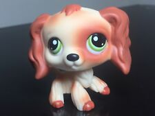 Littlest Pet Shop Cocker Spaniel Dog LPS # ? Puzzle Cream Brown Patch Green Eyes