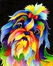 SHIH TZU 8X10 DOG  print by Artist Sherry Shipley