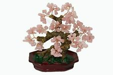 Chinese Feng Shui Bonsai Pink Rose Crystal Gem Stone Money Tree 8""