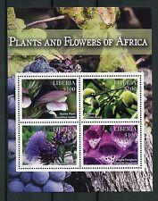 Liberia 2015 MNH Plants & Flowers Africa 4v M/S Cardoon Almond Purple Foxglove