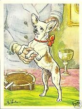 Rare 1952 Dog Art Print Austria Tobacco Bildwerk Card SMOOTH COATED CHIHUAHUA