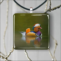 BIRD MANDARIN DUCK PENDANT NECKLACE 3 SIZES CHOICE -jlr4Z