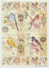 Rice paper for decoupage red, yellow, blue, colorful bird. 8,27×11,69 in. Russia