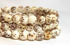 6mm White Salwag Seed Beads Natural Creamy Bodhi Nut Full Strand D-F11