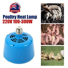 Poultry Heat Lamp Bulb Warming Light For Brooder Piglets Chicken Pet 220V -