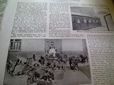 52402 ephemera 1905 article the police dogs of ghent