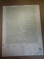Large 28x22 1983 Topo Map Emerald Mountain, California Sequoia Loraine Piute
