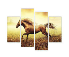 BROWN HORSE IN FIELD FRAMED PRINTS CANVAS WALL ART PICTURES 4 PIECE ANIMAL PHOTO