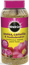 Miracle Gro Slow Release Ericaceous Azalea Camellia & Rhododendron Plant Food 1k
