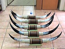 "Mounted Steer Horns 3' - 3' 5"" Tip To Tip (1 Set) Cow Bull Horns Longhorns"