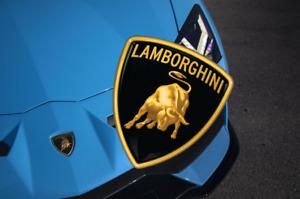 Lamborghini Emblem Crest  Vinyl Decal Sticker