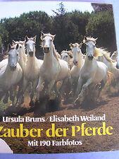 """Buch """"Zauber der Pferde""""  von 1976 Ursula Bruns Elisabeth Weiland"""