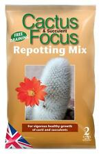 Cactus and Succulent Focus Repotting Mix 2L