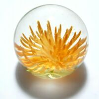 "VTG Island Studio Art Glass Orange Paperweight Guernsey Sea Life 2"" Tall"