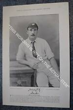 More details for rare original famous cricketers, #005 lord hawke, yorkshire, cricket 1895