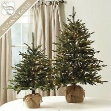 BALLARD DESIGN Suzanne Kasler Unflocked Frasier Fir Tabletop Christmas 1 Tree 4'