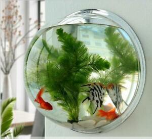 Acrylic Wall Mount Fish Bowl Aquarium Plant Tank Beta Goldfish Hanger Decor