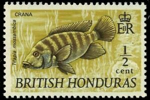 "BRITISH HONDURAS 1971-72 SG277 MOZABIQUE MOUTHBREEDER (""CRANA"")  -  MNH"