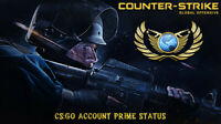 Counter-Strike: Global offesnive (PRIME) STEAM  (CS:GO) [FAST DELIVERY]