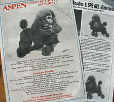 POODLE MINIATURE & TOY DOG KENNEL CLIPPINGS  from 1970s/80s x 35