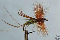 10 x Mouche Sèche Fumier  H12//14//16 fliegen truite cowdung fly fliegen mosca
