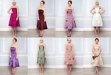 BHS Eve Bridesmaid Dress Dusky Pink Fuchsia Merlot Lavender Champagne