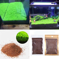 Live Aquarium Plant Seeds Glossostigma Leaf Carpet Aquatic Fish Tank Decor5g
