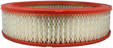 Air Filter Defense CA3602