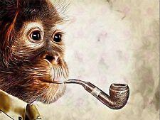 PHOTO PAINTING MONKEY SMOKING PIPE FUNNY LARGE ART PRINT POSTER LF1690