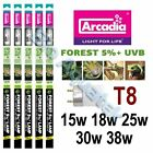 Arcadia T8 Reptile Lamp Tube Euro Range D3 Forest 5% + UVB - 15w 18w 25w 30w 38w