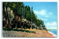 Postcard The Ovens, Bar Harbor, Acadia, Mt Desert Island, Maine A11