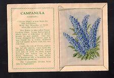 Kensitas silk flower Medium CAMPANULA  folder A