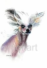 Chinese Crested #1 Dog Art Print Signed A Borcuk Painting