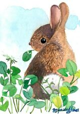 ACEO Limited Edition  - Lovely bunny