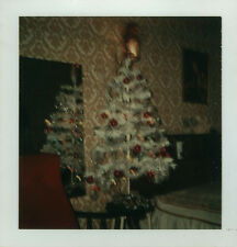 PHOTO ANCIENNE - VINTAGE SNAPSHOT - SAPIN DE NOËL FLOU MIROIR POLAROID-CHRISTMAS