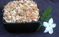 Krauterino24 - Jasminblüten ganz - 100g
