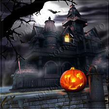 Halloween 10'x10' Computer/digital Vinyl Photo Scenic Background Backdrop BHF374