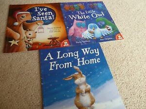 Bundle of 3 Christmas books I've seen Santa, The little white own, long way from